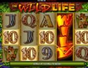 wild-life-vlt-gratis