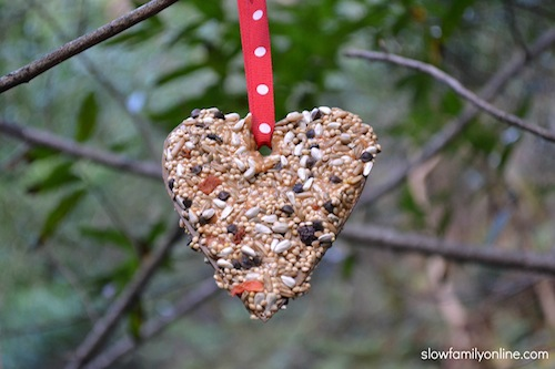 Quick and easy valentine bird feeder slow family for Toilet paper tube bird feeder