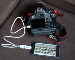 Small Of Nikon Transfer 2