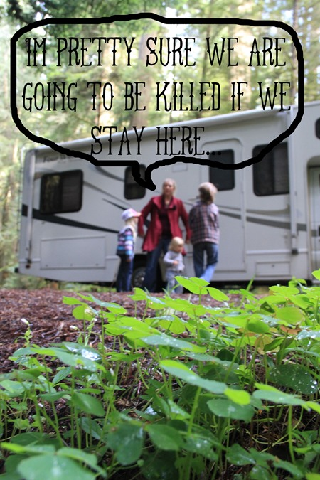 off the grid in the redwoods