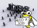 Top 5 Guidelines For Beginners To Start a Job as Freelancer