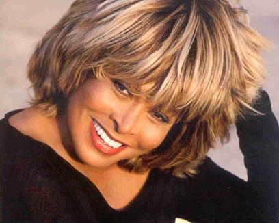 Tina turner richest singer