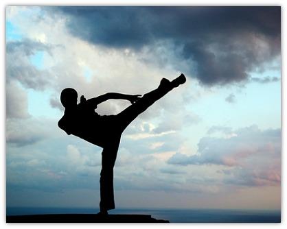 marketing like a kung fu master