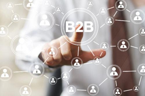 Building an online B2B network
