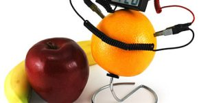 a351_fruit