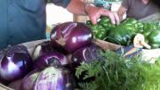 Nesconset farmers market