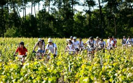 Cycling-the-Bordeaux-Vineyards1