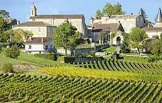 Vineyards and Chateau in France