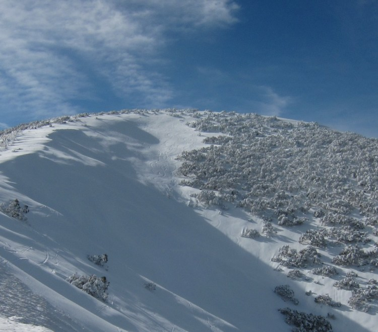 Hotham has heaps of great slack country