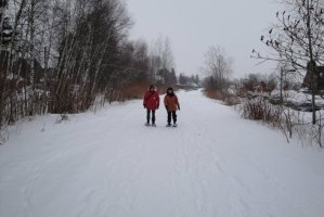 Solstice Snowshoe Walk @ Reinstein Woods Nature Preserve | Cheektowaga | New York | United States