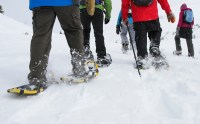 Snowshoeing at Sunshine Village Resort