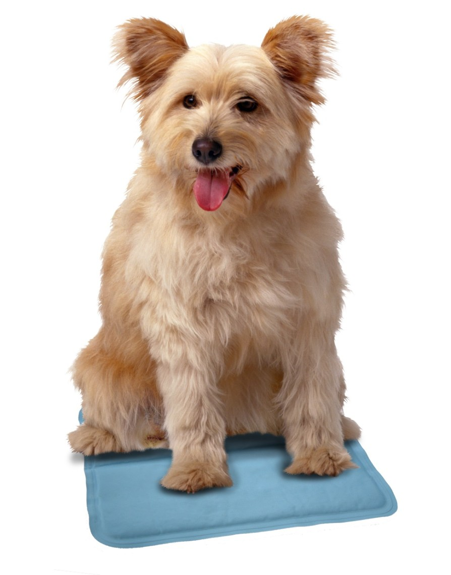 SnuggleSafe Cool Pad for Pets