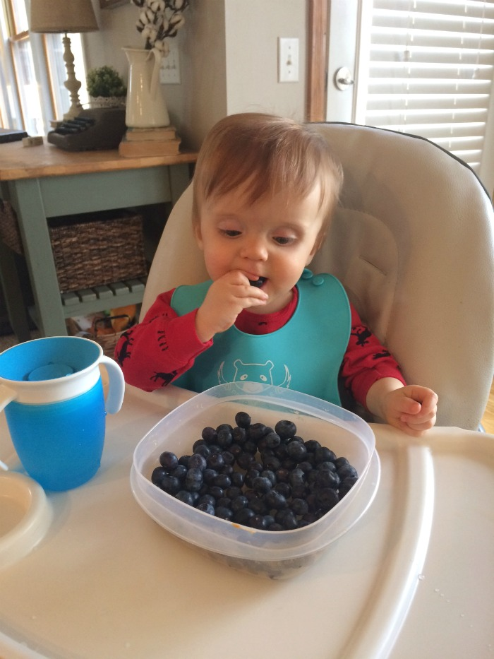 Caleb Twelve Month Update Blueberries