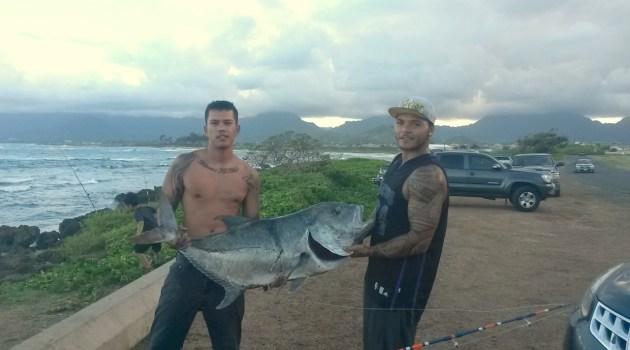 Ulua – One Angler's Quest