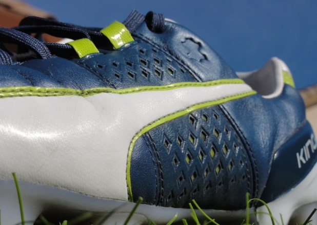 Up Close with the Puma King II