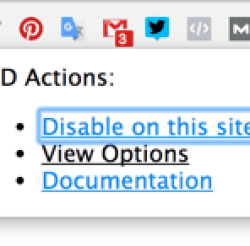Click the tool's icon in the browser toolbar and select View Options.