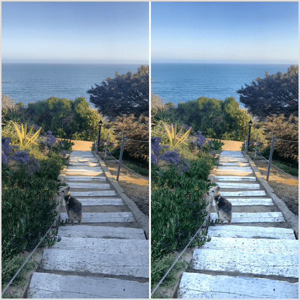 snapseed selective tool before and after