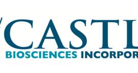 Castle Logo png_2