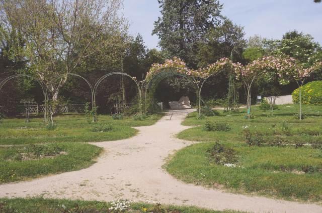 roseraie parc borely marseille