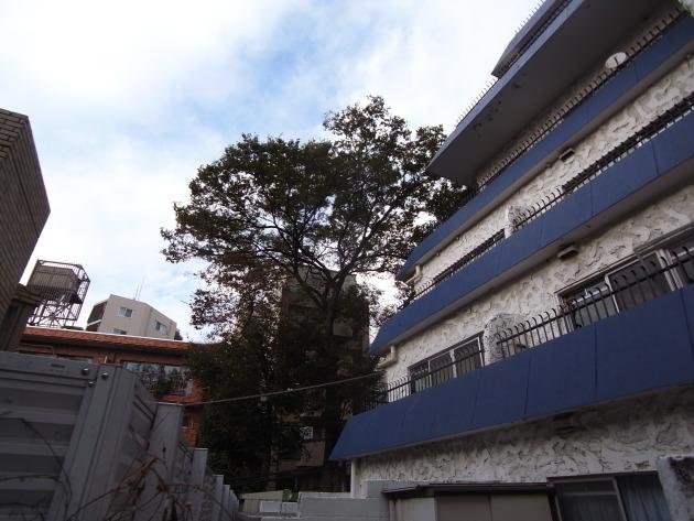 秀和桜丘レジデンス外観|SOHO東京