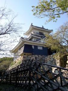 Castle in Japan