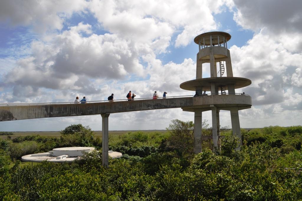 Guided Tour Everglades National Park