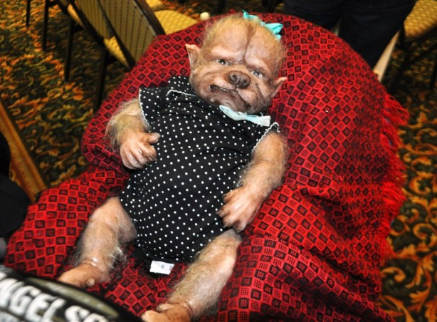 Awe! A Baby Werewolf! Spooky Empire, Orlando, Fla, Oct. 26, 2013