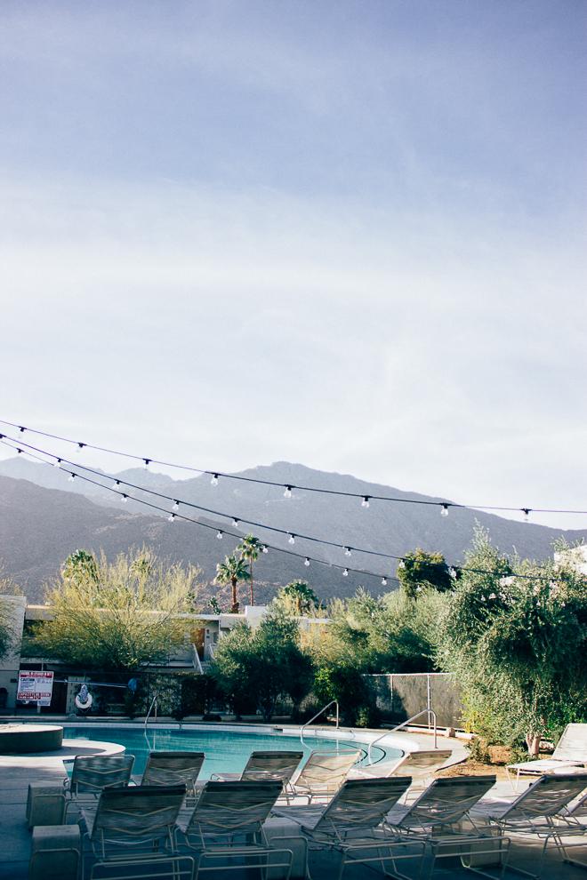 Something Sakura: Palm Springs