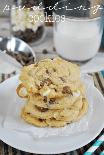 Triple Chocolate Pudding Cookies | www.somethingswanky.com