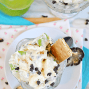 Skinny S'mores Apple Salad | www.somethingswanky.com