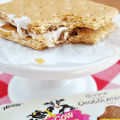 Skinny Milk Chocolate and Caramel S'mores | www.somethingswanky.com
