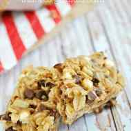 Peanut Butter S'mores Granola Bars | www.somethingswanky.com