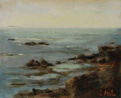 2015-07-Sescapes-Hale-Rocky Maine Coast.sm