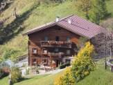 Haus_mit_Sträuchern