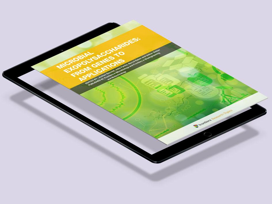 projekte-digital-frontiers-covers-sonnensprosse