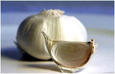 does-garlic-work-for-warts