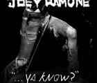 "Video: ""Rock and Roll is the Answer"", lo nuevo de Joey Ramone"