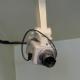 Momentos felices grabados en cámaras de seguridad