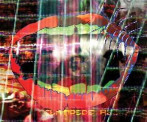 Centipede Hz Animal Collective