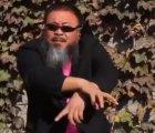 Ai-Weiwei-Gangnam-Style