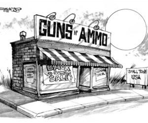 gun control copy