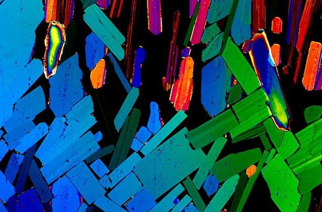 Bebidas bajo el microscopio 08