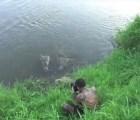 Video: Momento en el que un cocodrilo casi se come a un fotógrafo