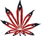 Se preparan empresarios en EEUU para la legalización de la marihuana