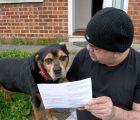 Y en la nota idiota del día... perro es invitado a votar en próxima elección en Europa