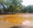 Alcaldes de Sonora exigen pago de daños por derrame en río Bacanuchi