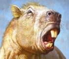 Conoce al súper-roedor gigante tan poderoso como un tigre