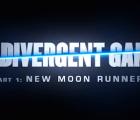 The Divergent Games: ¿Las sagas adolescentes son lo mismo?