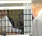 Solicitará Elba Esther cumplir su sentencia desde casa