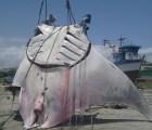 Capturan una mantarraya de una tonelada y ocho metros en Perú